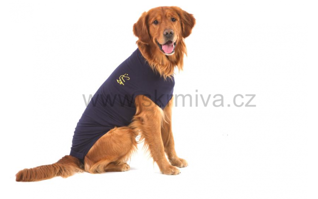 Medical Pet Shirts Dog L