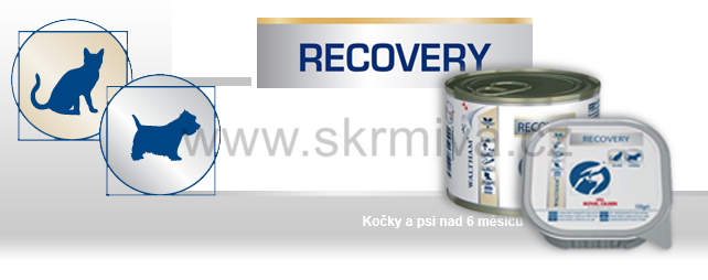 Royal Canin VD Fel / Can Recovery 195g konz